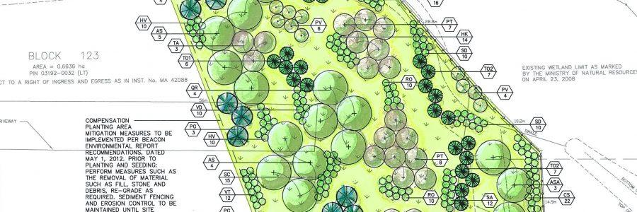 Beacon Environmental Services - Landscape Architecture - Plan