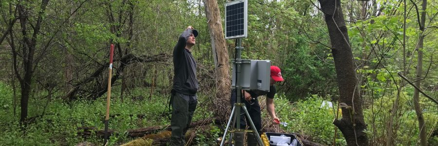 Environmental Monitoring And Site Supervision